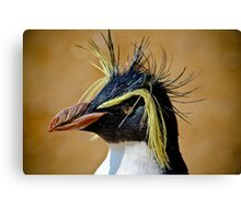 Rockhopper Penguin......... Canvas Print