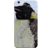 Molting Emperor Penguin. iPhone Case/Skin