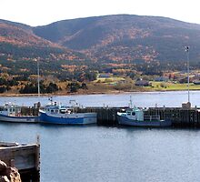 Bay St. Lawrence by George Cousins