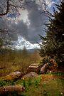 Leyburn Shawl by Paul Thompson Photography