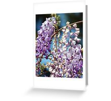 Scent of Spring: Greeting Card