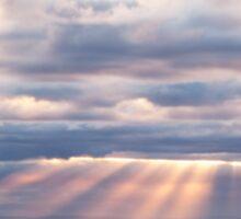 Light rays - Sorrento - Mornington Peninsula Sticker