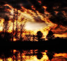 Bama Sunset 100 by bamagirl38