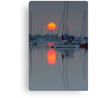 Putting In An Appearance Canvas Print