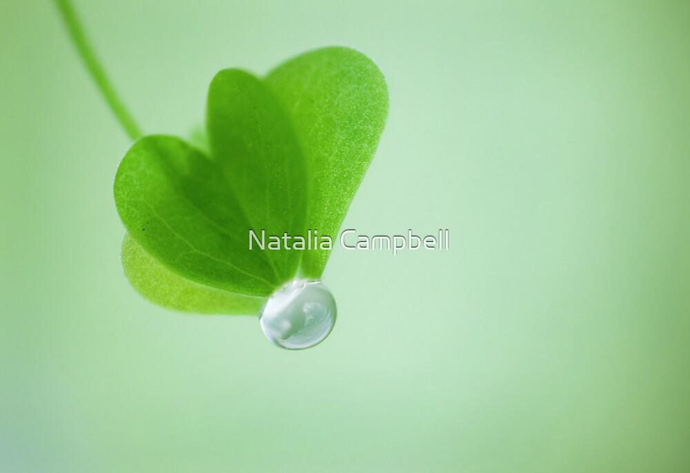 ♥o♥ by Natalia Campbell