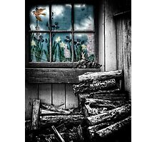 The Woodpile Photographic Print