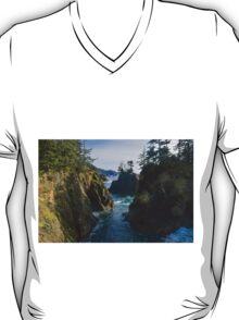 Natural Bridges Cove, Samuel H Boardman State Park, Curry County, Oregon, USA T-Shirt