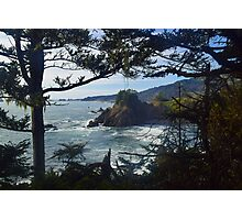 Samuel H Boardman State Park, Curry County, Oregon Photographic Print