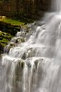 Detail - Chittenango Falls by Stephen Beattie