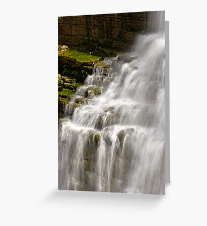 Detail - Chittenango Falls Greeting Card