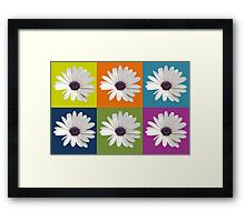 White African Daisy Collage On Bright Background Framed Print