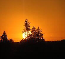 Brilliant Orage Sky at Sunrise by Helena Haidner