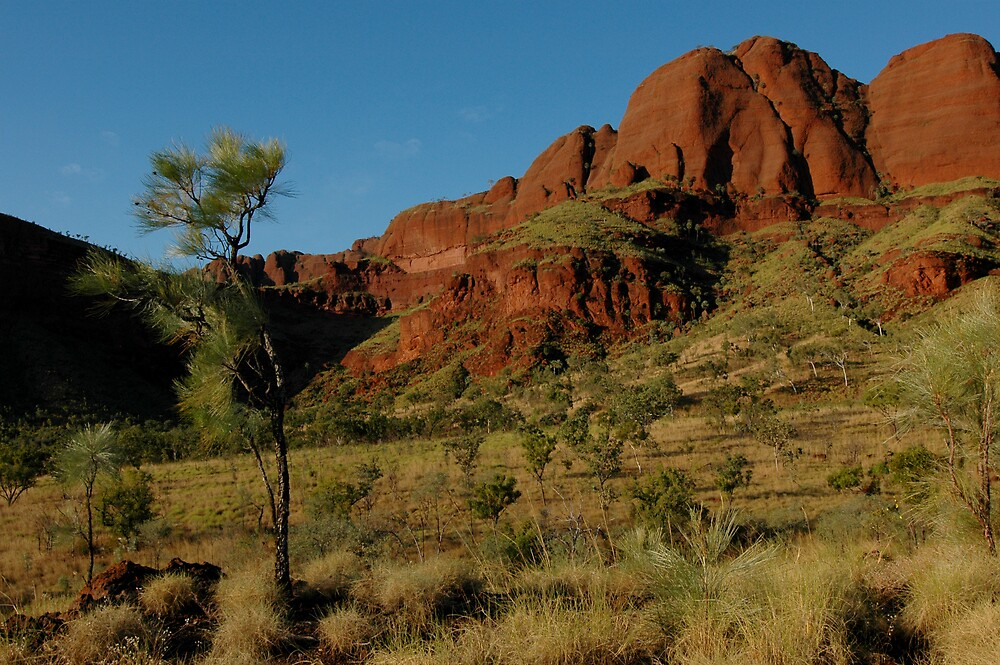 Ragged Range, West Australia by Richard  Stanley