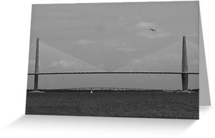 Cooper River Bridge by mklue