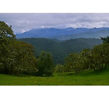 meadow, Korbel, California, USA Photographic Print