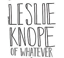Be The Leslie Knope of Whatever You Do by ughdanielle