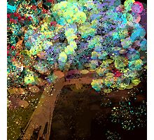 Colorful Confetti Tree Abstract Photographic Print