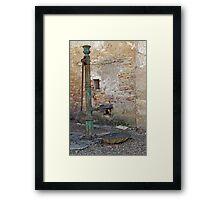 Vineyard Pump Framed Print