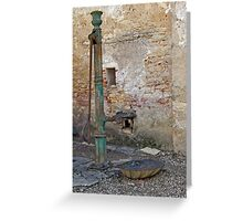 Vineyard Pump Greeting Card