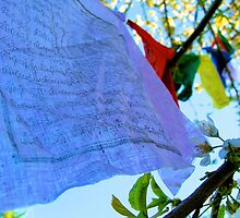 Tibetan Flags by Heather Parsons
