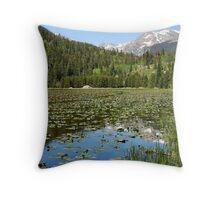 Spring Reflections, Cub Lake Throw Pillow
