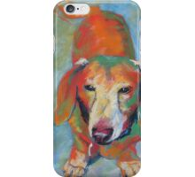 Darwin the dachshund iPhone Case/Skin