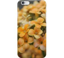 petal to the medal iPhone Case/Skin
