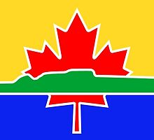 Flag of Thunder Bay  by abbeyz71
