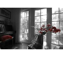 The Orchid and The Cushion Photographic Print