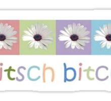 Kitsch Bitch Collage Of Pastel African Daisies Sticker