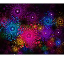Flowers That Sparkle Photographic Print