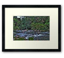 Williams River 2 Framed Print