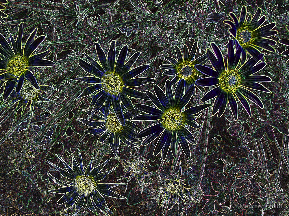Velvet Dandelions by Maureen Smith