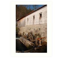 Slovenian Mill Art Print