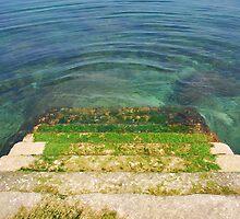 Mossy Steps Leading Down into Water by jojobob