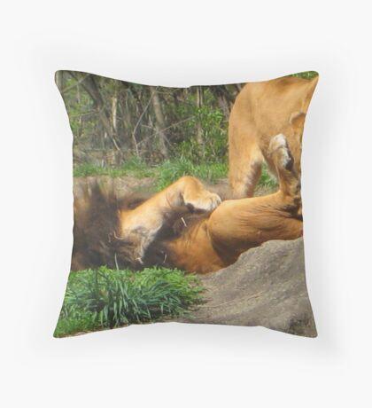 Crunch! Throw Pillow