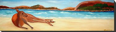 Lazy Days, Esperance Beach, WA   by C J Lewis