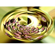 Gold Nature Abstract Photographic Print