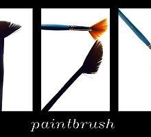 Paintbrush by Barbara  Corvino