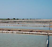 Salt Crystallization Field, Seča by jojobob