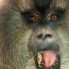 Screaming Monkey by starbucksgirl26