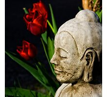 Springtime for Buddha Photographic Print