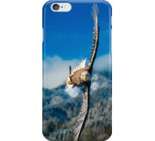 Crosswind iPhone Case/Skin