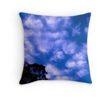 Coit Tower San Francisco Throw Pillow