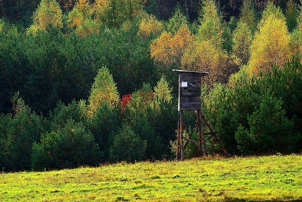 View of autumn with the pulpit by renifer