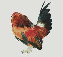 Belgian d'Anver Quail Cock by Norman Schwartz