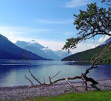 Upper Waterton Lake by Vickie Emms