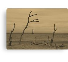 Ravaged By Time Canvas Print