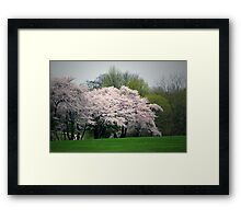 Locust Valley, NY Framed Print