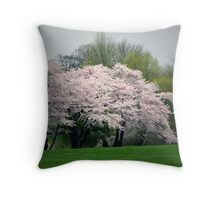 Locust Valley, NY Throw Pillow